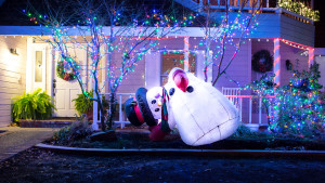 Holiday Lights-11 (1)